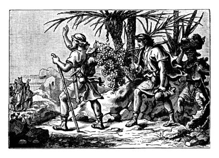 Two men carrying a big bunch of grapes and another man carrying basket of fruits on head and followed them. Moses stood in background with raised hand to these men, vintage line drawing or engraving illustration.