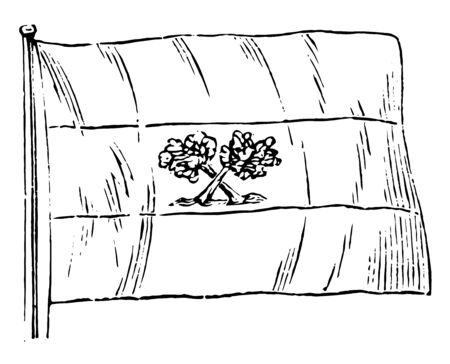 Paraguay Flag, this flag is divided into three horizontal bands, it has two cross trees in middle band, vintage line drawing or engraving illustration