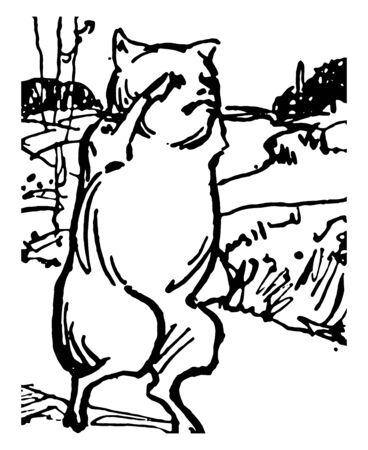 Five Little Pigs, this scene shows the little pig walking and it looks like he cant find way to home, vintage line drawing or engraving illustration