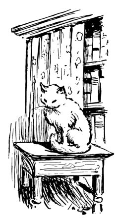 A cat sitting on an end table by a bookshelf, this scene shows cat sitting on table, bookshelf behind cat, vintage line drawing or engraving illustration