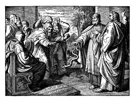 In questa cornice, un re è seduto nel cortile e molte persone sono in piedi al suo fianco e in quell'incontro una persona ha portato un serpente, un disegno dell'annata o un'illustrazione dell'incisione. Vettoriali