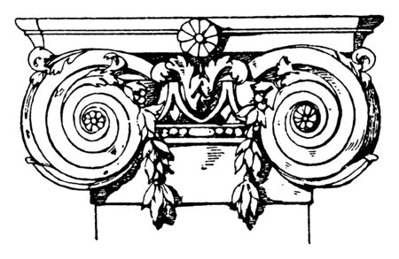 Ionic Pilaster Capital, ornaments, rolled, scroll, spiral curves, supports, volutes, vintage line drawing or engraving illustration. Vettoriali