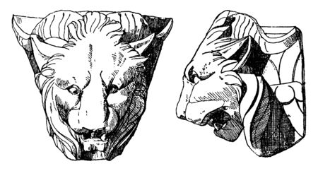 Chimaera Head is shown from its front and side view, it is found in the corner of an antique three-sided altar, vintage line drawing or engraving illustration. Stock Illustratie
