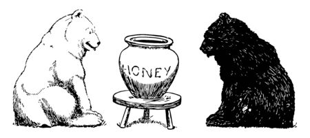Bears 2, this picture shows two bears, a black bear and white bear, they found big jar of honey which kept on small table in between them, vintage line drawing or engraving illustration