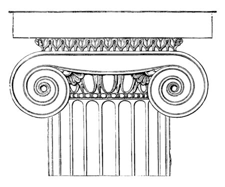 Ionic Capital from the Temple of Minerva Polias at Priene, the Doric echinus, a cyma ornamented with leaves, a pearl-beading beneath, vintage line drawing or engraving illustration.