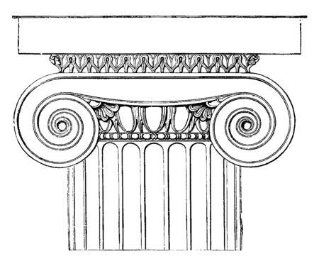 Ionisches Kapitell aus dem Tempel der Minerva Polias in Priene, der dorische Echinus, ein mit Blättern verziertes Cyma, eine darunter liegende Perlenperle, Vintage-Linienzeichnung oder Gravurillustration.