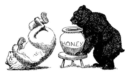 Bears 6, this picture shows black bear pushed white bear, and white bear fall down on ground, black bear holding jar of honey, vintage line drawing or engraving illustration