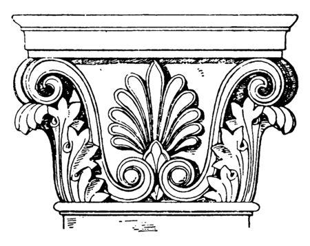 Greek-Corinthian Pilaster Capital, leaf, ornaments, palmette, pilaster, scroll, spiral, supports, vintage line drawing or engraving illustration. Illustration
