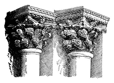 Byzantine Capital, scrowning, member, each side, rises, vintage line drawing or engraving illustration.