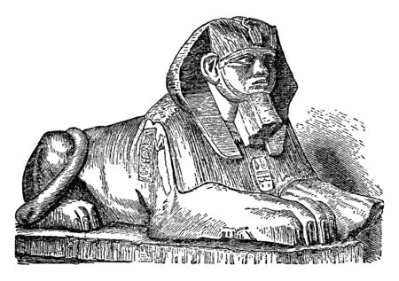Sphinx is a zoomorphic mythological figure, vintage line drawing or engraving illustration.