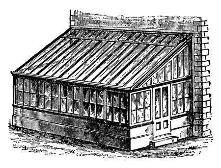 This illustration represents Plant House which is associated with the growth of ornamental plant and flowers, vintage line drawing or engraving illustration. Archivio Fotografico - 133013843