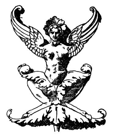 Flying Grotesque Pilaster is a squatting winged female without arms, It is found in a palace in Siena, vintage line drawing or engraving illustration.