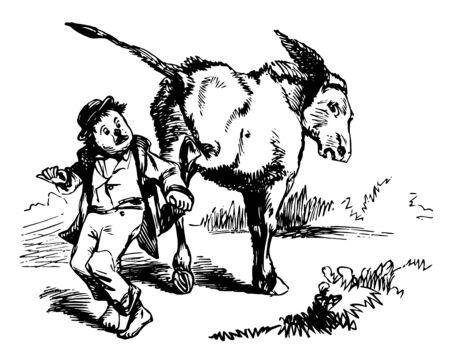 This image represents Donkey Kicking Child, vintage line drawing or engraving illustration. Stok Fotoğraf - 133014238