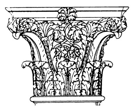 Roman Corinthian Capital,  found in the palaces of the emperors in Rome, a design of spiral curves,  the rows of leaves and unite in pairs, vintage line drawing or engraving illustration. Иллюстрация