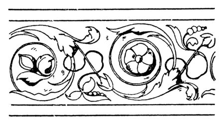 Frieze Undulate Band is an Italian Renaissance design, it is wavelike floral design, vintage line drawing or engraving.