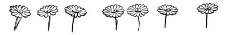 This cards has flowers. 7 Flowers are separately placed without forming aby group, Vintage line drawing or engraving illustration.