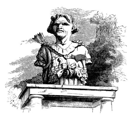 Bust of Man is a sculpted or cast representation of the upper part of the human figure, vintage line drawing or engraving illustration.