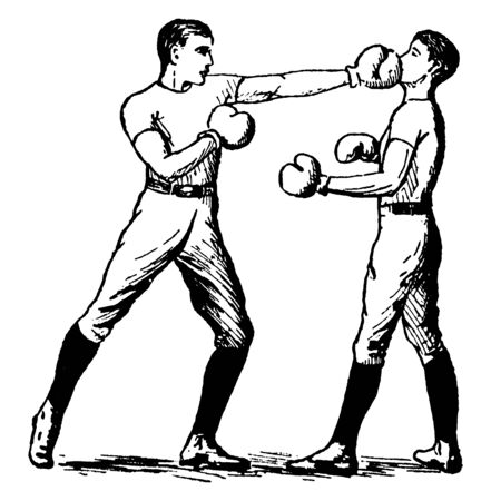 Two boxers displaying position of attacking on face using left hand blow technique, vintage line drawing or engraving illustration.