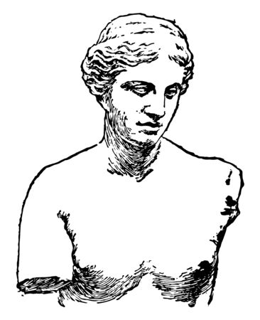 An ancient sculpture of Venus of Melos, The Greek goddess of love and beauty, vintage line drawing or engraving illustration. 矢量图像