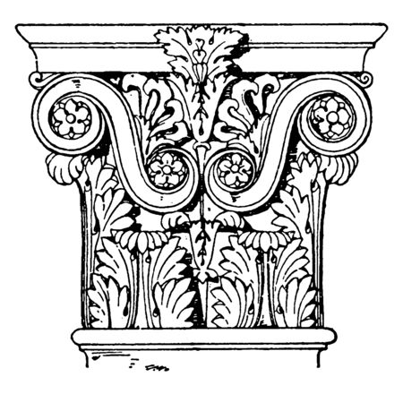 Roman-Corinthian Pilaster Capital, sides, temple, Pantheon, Rome, vintage line drawing or engraving illustration.