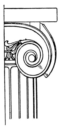 Ionic Capital, design, greece, Ionic, rolled, scroll, spiral curves, vintage line drawing or engraving illustration. Stok Fotoğraf - 133017436