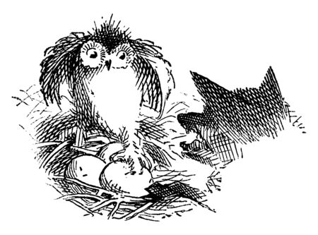 This illustration represents Owl and Wolf, vintage line drawing or engraving illustration.
