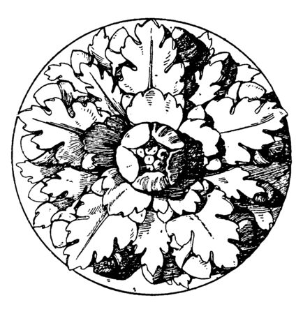 Roman Rosette is an artificial rose with five divisions, It is found on doors and as centerpieces of ceilings, vintage line drawing or engraving illustration.