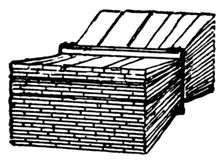 This illustration represents Shingles which is made with a base mat, vintage line drawing or engraving illustration.