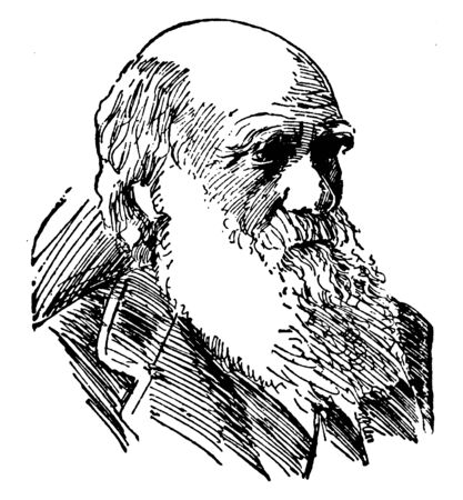 Charles Robert Darwin, 1809-1882, he was an English naturalist, geologist and biologist, famous for his contributions to the science of evolution, vintage line drawing or engraving illustration Illustration