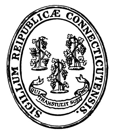 The Seal of the State of Connecticut (Sigillum reipublicae Connecticutensis). The seal in oval shape shows three grapevines with their motto underneath, Qui transtulit sustinet, vintage line drawing or engraving illustration Illustration