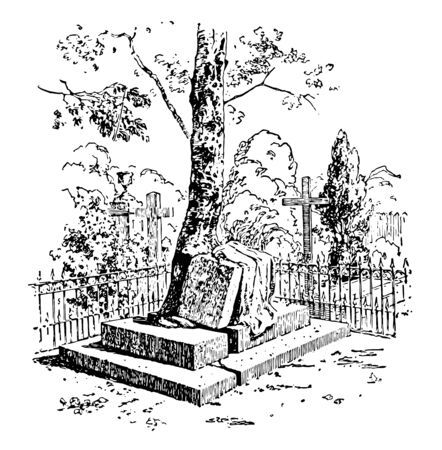 A huge gravestone is broken by the growth of the roots of a tree, vintage line drawing or engraving illustration. Ilustracja