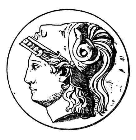 A picture of the Minerva head which is a design on the Greek Goddess Athena. This design frequently occurred on medallions, vintage line drawing or engraving illustration. Illustration
