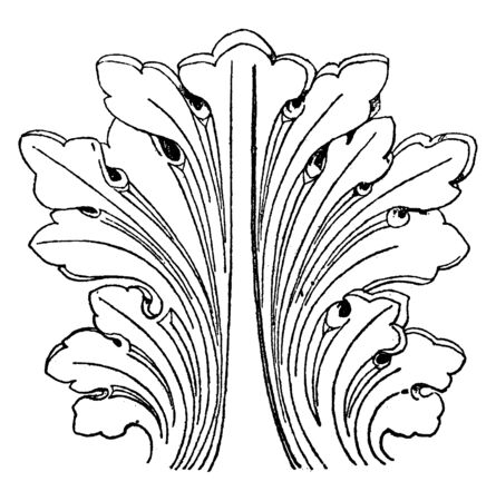 Romanesque Leaf was found in a monastery in St. Trophimus, vintage line drawing or engraving illustration. Çizim