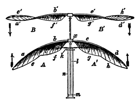 This image represents Double Elastic Spiral Wing, vintage line drawing or engraving illustration.