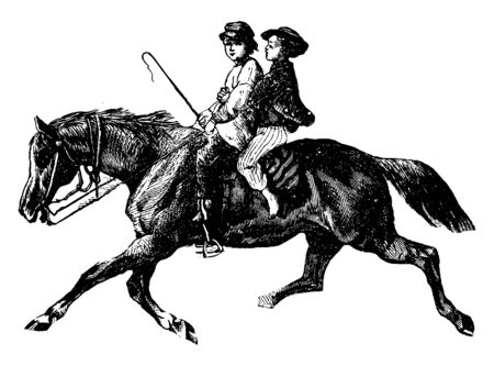Two kids riding a horse with a whip in her hand, vintage line drawing or engraving illustration. Ilustrace