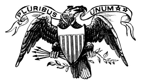 To authenticate certain documents, which are issued by U.S. federal government, the Great Seal of the United States is used, vintage line drawing or engraving illustration.