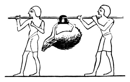 In this picture there are two men who are holding a bamboo, a pig is hanged on bamboo. This is called as Egyptian Hunting Party, vintage line drawing or engraving illustration.