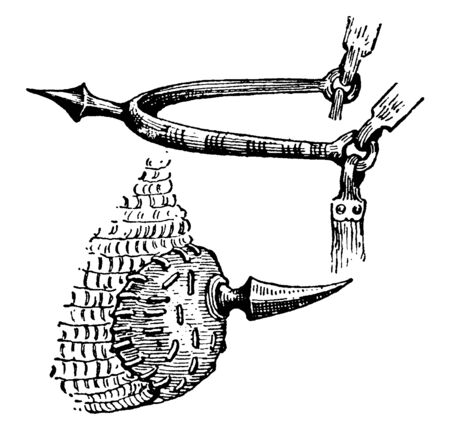 A spur is a device with a small spike designed to be worn underfoot of rider's heel and used for the purpose of directing a horse to move forward while riding, vintage line drawing or engraving illustration.