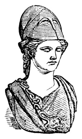 Minerva, she was the Roman goddess of wisdom and strategic warfare, and the sponsor of arts, trade, and strategy, vintage line drawing or engraving illustration