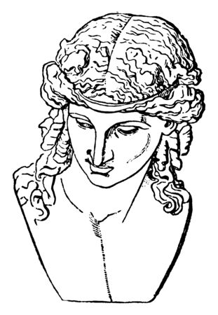 In this image Portrait of Dionysus are gods of wine, vintage line drawing or engraving illustration. Illustration