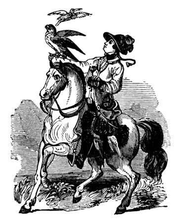 In this picture, woman on horseback is on ride for hunting purpose. There is one bird on her right hand, vintage line drawing or engraving illustration.