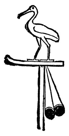 In this image a heron is seen sitting on a wooden pillar, vintage line drawing or engraving illustration. Ilustração