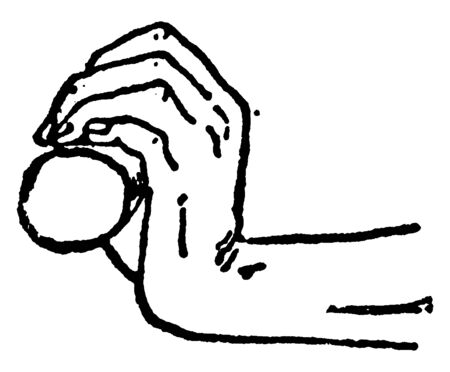 Release position in rowing: The wrists should remain flat and draw the handle in at the release, vintage line drawing or engraving illustration.