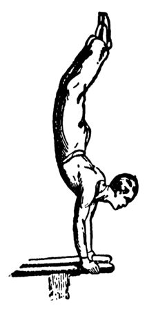 Gymnast performing hand stands on double bar. His body is in straight position in air, vintage line drawing or engraving illustration.