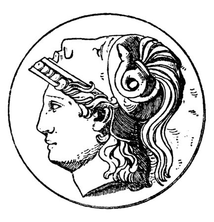 An picture of Left Minerva head which is the modern version design of the Greek Goddess Athena. This design frequently occurred on medallions, vintage line drawing or engraving illustration.