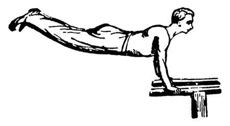 Gymnast is hanging on double bar. His body is in parallel position to double bar, vintage line drawing or engraving illustration.