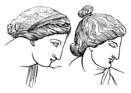 There are two women in this frame. The hairstyle looks very good in it and they are almost stopped, vintage line drawing or engraving illustration. Çizim