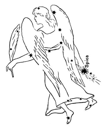 Virgo is one of the groups of stars of the zodiac. Its name is Latin for virgin. Lying between Leo toward the west and Libra toward the east, it is the second biggest star grouping in the sky, vintage line drawing or engraving illustration.