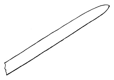 Sword blade shaped wood lying curved, vintage line drawing or engraving illustration.