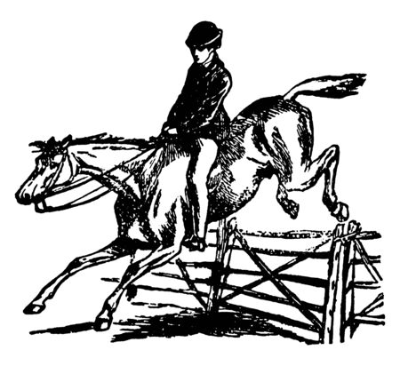 Horse is jumping and crossing a hurdle during run, vintage line drawing or engraving illustration. Illusztráció